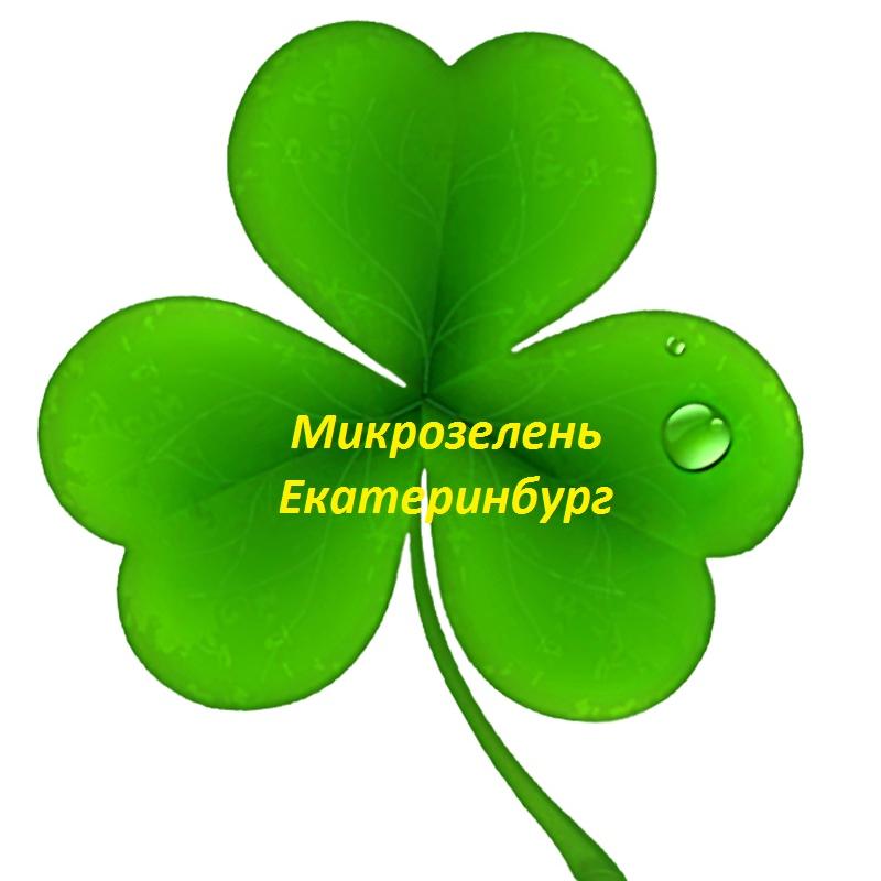 Микрозелень Екатеринбург