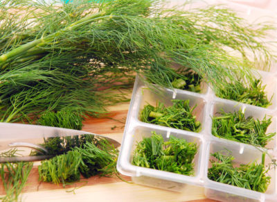 Сбор микрозелени